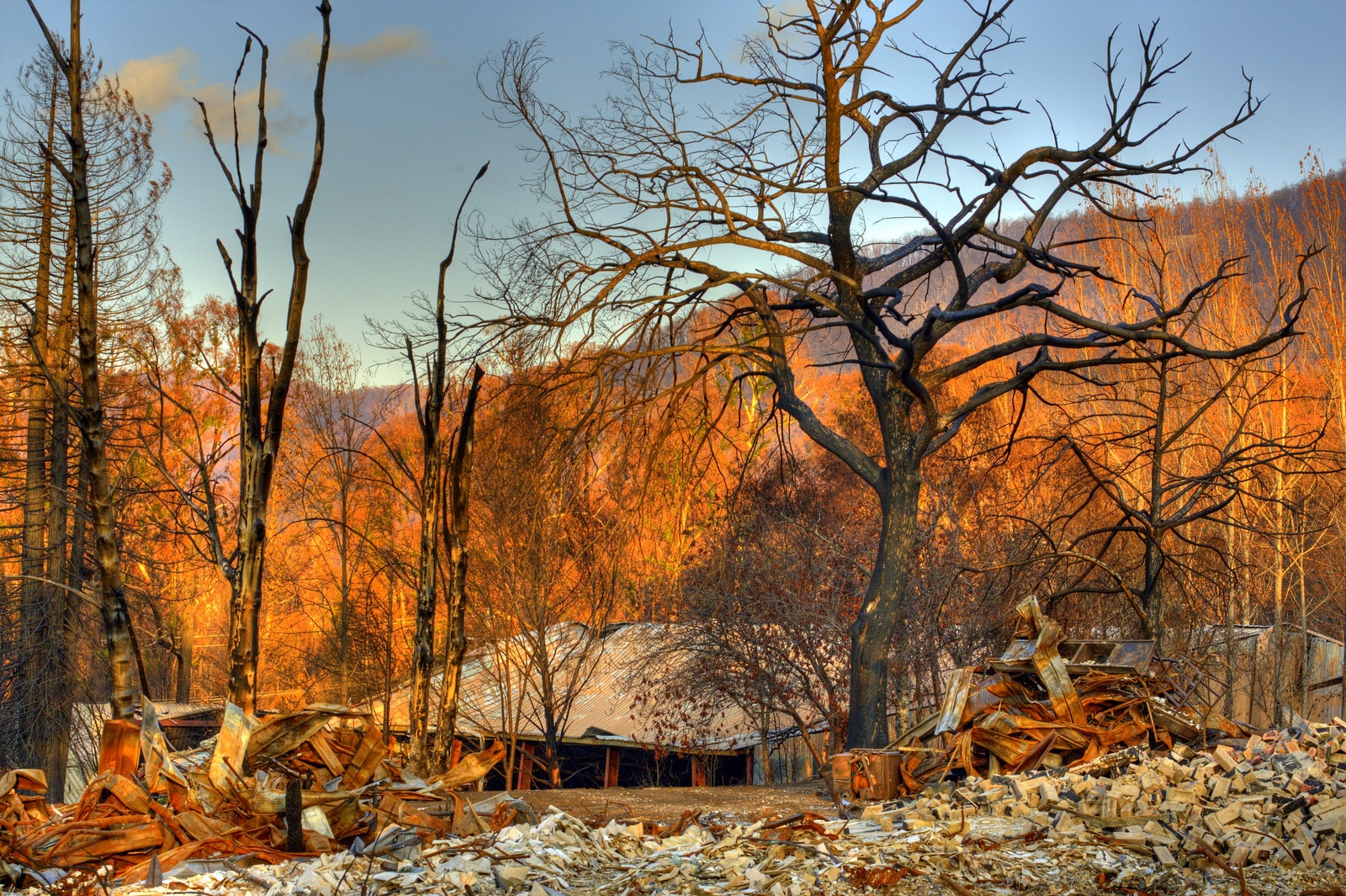 Wildfire Safety Network